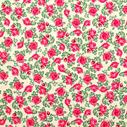 Flor e Fruto 031