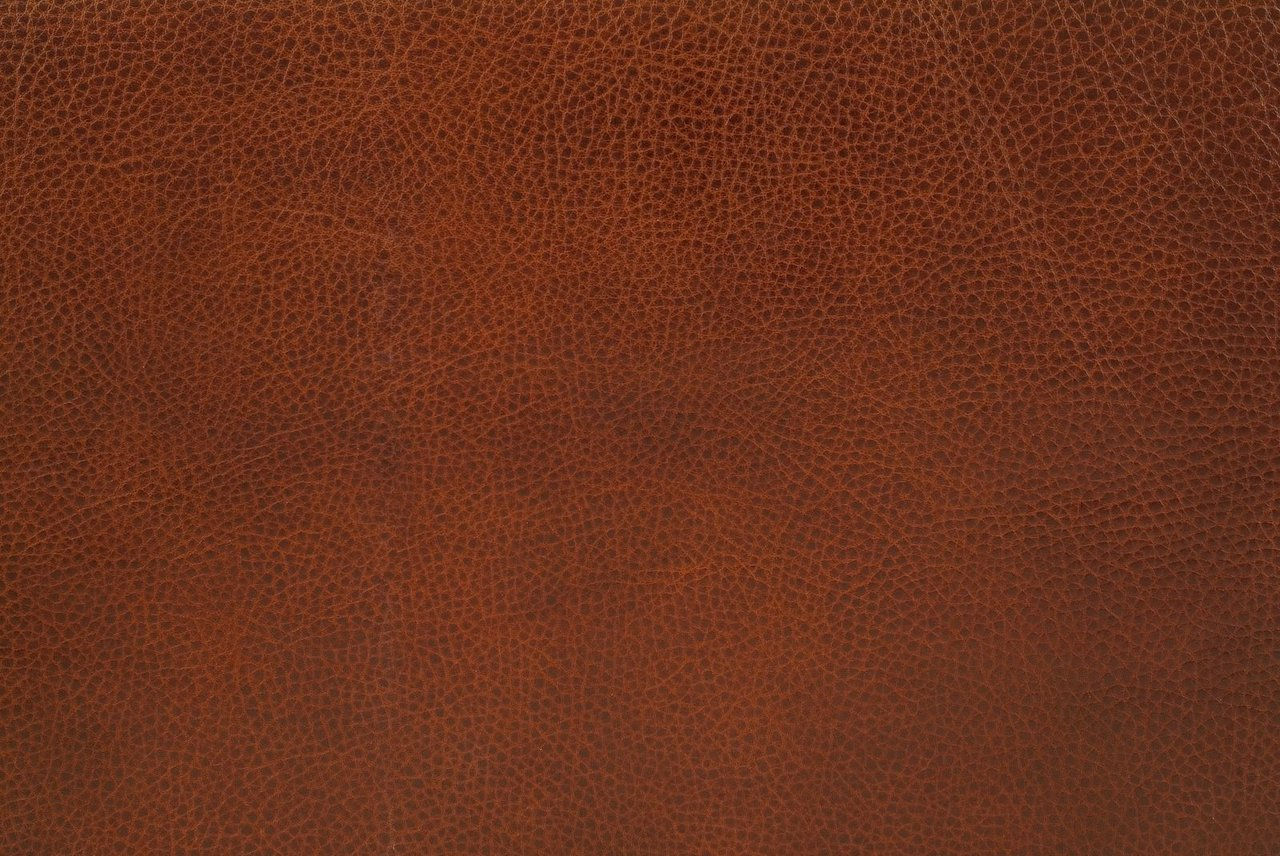 large leather.jpg