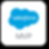 SalesforceMVp.png