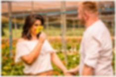 Pré Casamento em Holambra, Fotos Pre casamento em Holambra