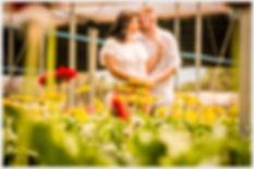 Pré Casamento em Holambra, Fotos Pre casamento em Holambra,Pré Casamento em Jardins