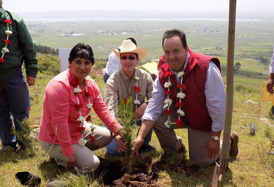 Reforestación CONAFOR-Ayuntamiento