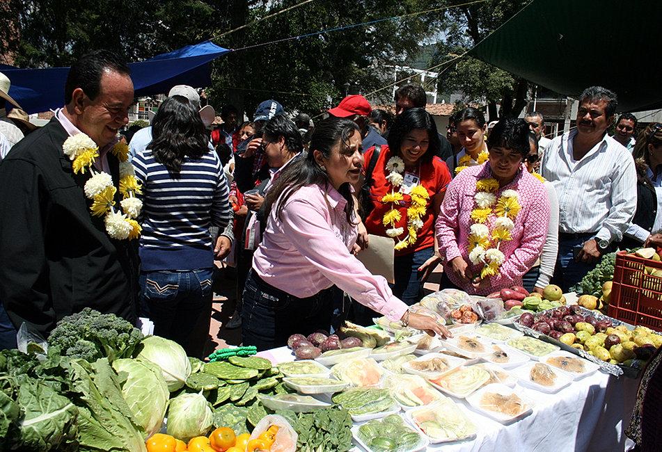 Feria de hortalizas 2014