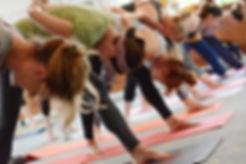 winery yoga pic.jpg