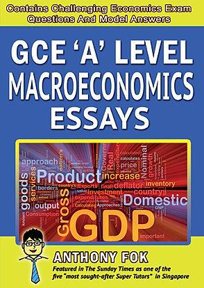 Economics MacroEconomics Essays