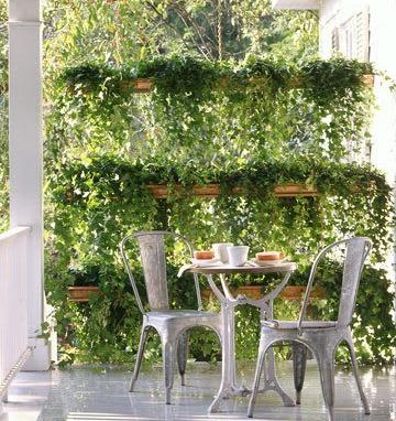Jardim vertical, transforma ambientes.