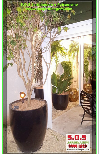 trelica jardim curitiba:Jardinagem e Paisagismo em Curitiba , jardinagem em Curitiba ,