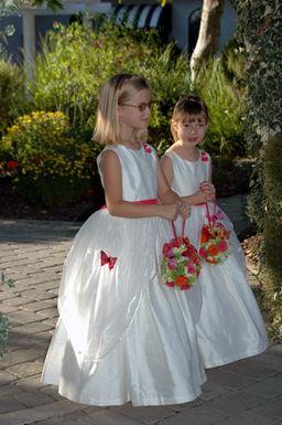 Butterfly Wedding 1