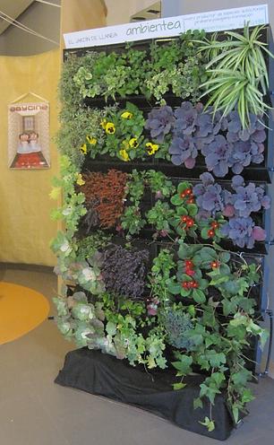 diseo y ejecucin de obras de jardinera y restauracin ambiental - Jardineria Y Paisajismo
