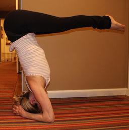 cynthia wolfe yoga