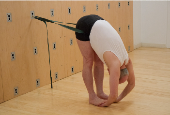 wall yoga mike milversted