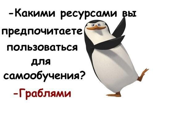 9866f8_70fff49fcf814e429dc72244bcdbc218~