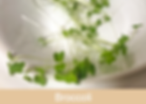 broccoli, microgreens, ibiza