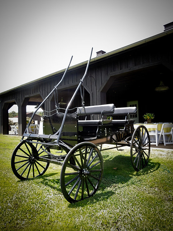 Moss Mountain Wedding Carriage Ride (136 of 231).jpg