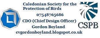 Gordon Boyland  Graphic Designer for hire.