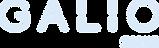 GalioGroup_logo_RGB_negative.png