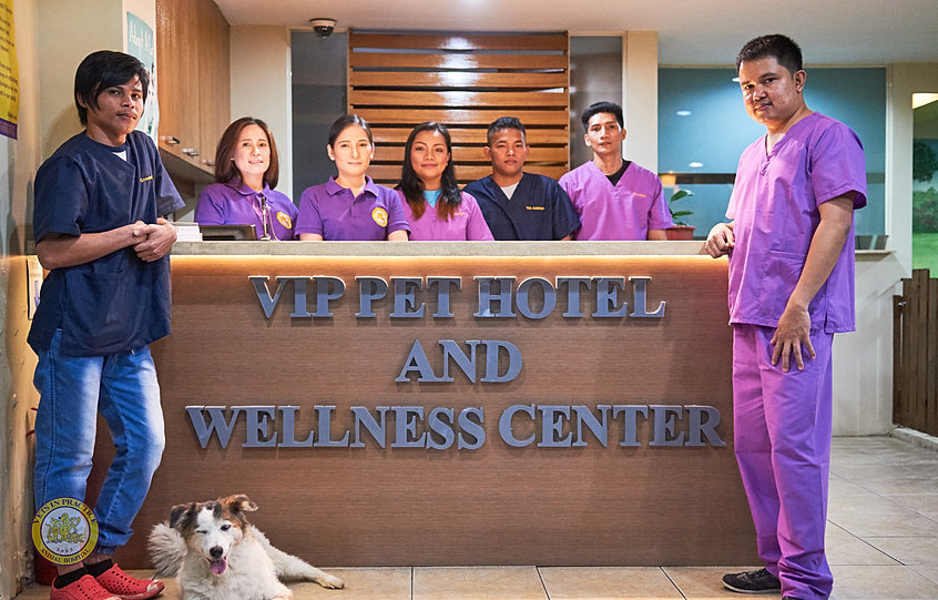 wellness center mission and vision Mission we are committed to enriching the university and local communities by providing unparalleled and inclusive educational and recreational programs, services, and facilities to promote physical, social, and emotional health and wellness.