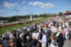 Øvrevoll, galopp, hest, norsk tipping, familie, bærum, fest, publikum, sport, opplevelser, familie, hester, for barn, matopplevelser, middag, restaurant