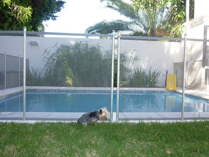 Babysecur vallas para piscinas safety pool fence perro for Barrera piscina