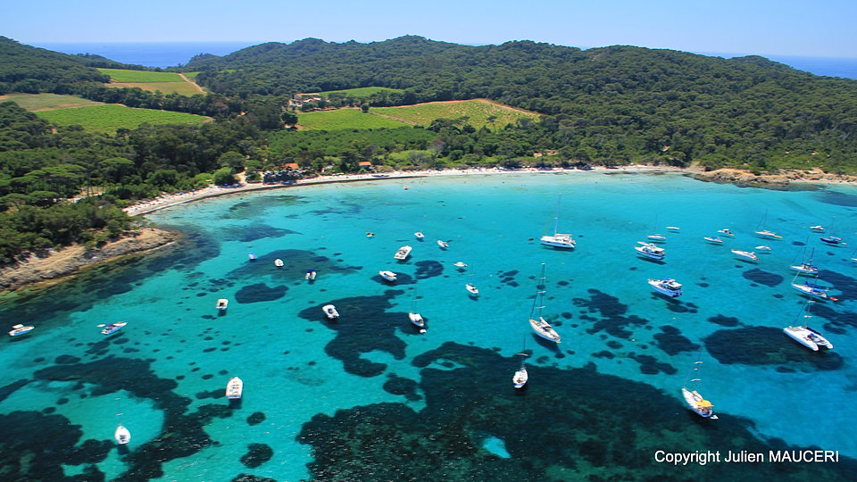Toulon ou saint mander porquerolles - Office de tourisme de porquerolles ...