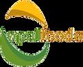 logo_opal_edited.png