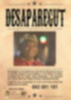 cartell desaparegut2.jpg