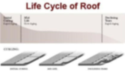 RoofLifeCycle.jpg