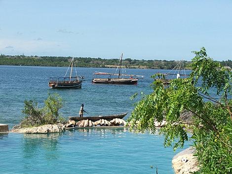 Wasini Island Pictures Claw's on Wasini Island