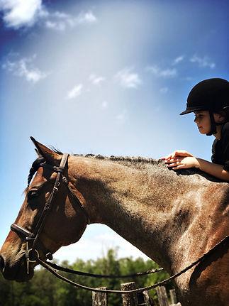 long branch preserve horseback riding li