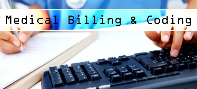 vat services plus, inc | medical-coding-and-billing, Human Body