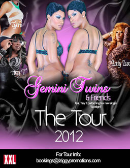 Gemini Twins and Friends Tour5 copy.jpg