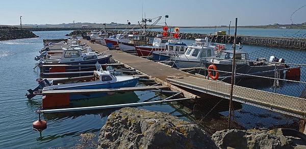 shetland NAFC.jpg