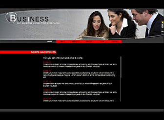 Experts LTD Template - Impress your clients with our sophisticated looking, yet simple to edit Flash layout. Designed with all your business needs in mind, there is plenty of room to write extensive amounts of text, customize a team page, and more.