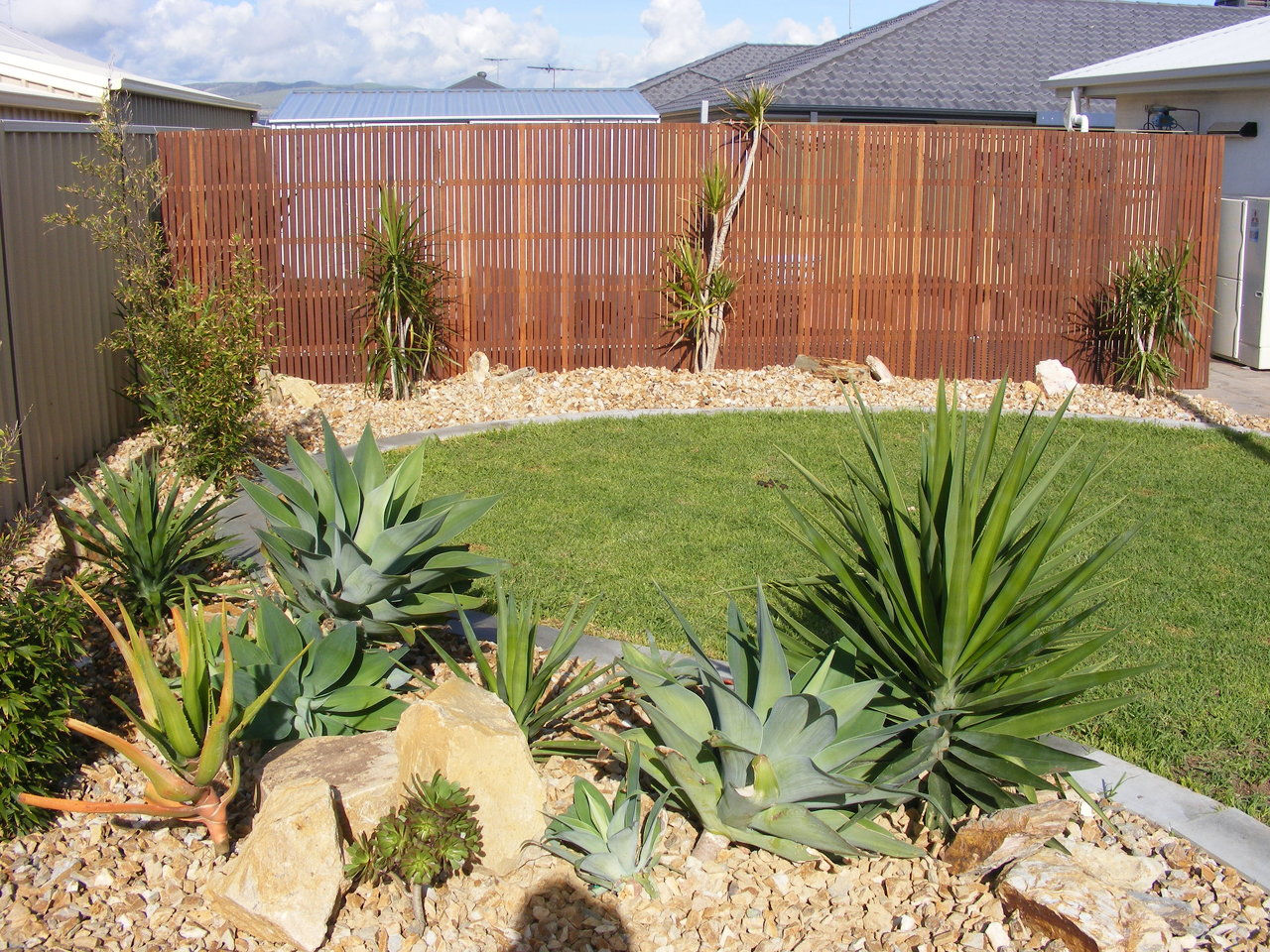 Cactus landscaping adelaide sa page 2 for Garden design using succulents
