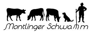 montlinger-schwamm-1.png