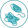 icon_biology.png