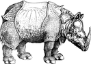 WAL Logo rhinoceros-dürer.png