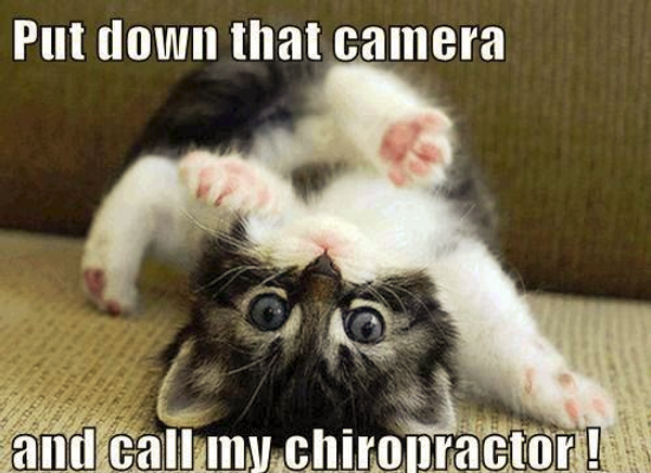 miracle hills chiropractic chiropractic memes