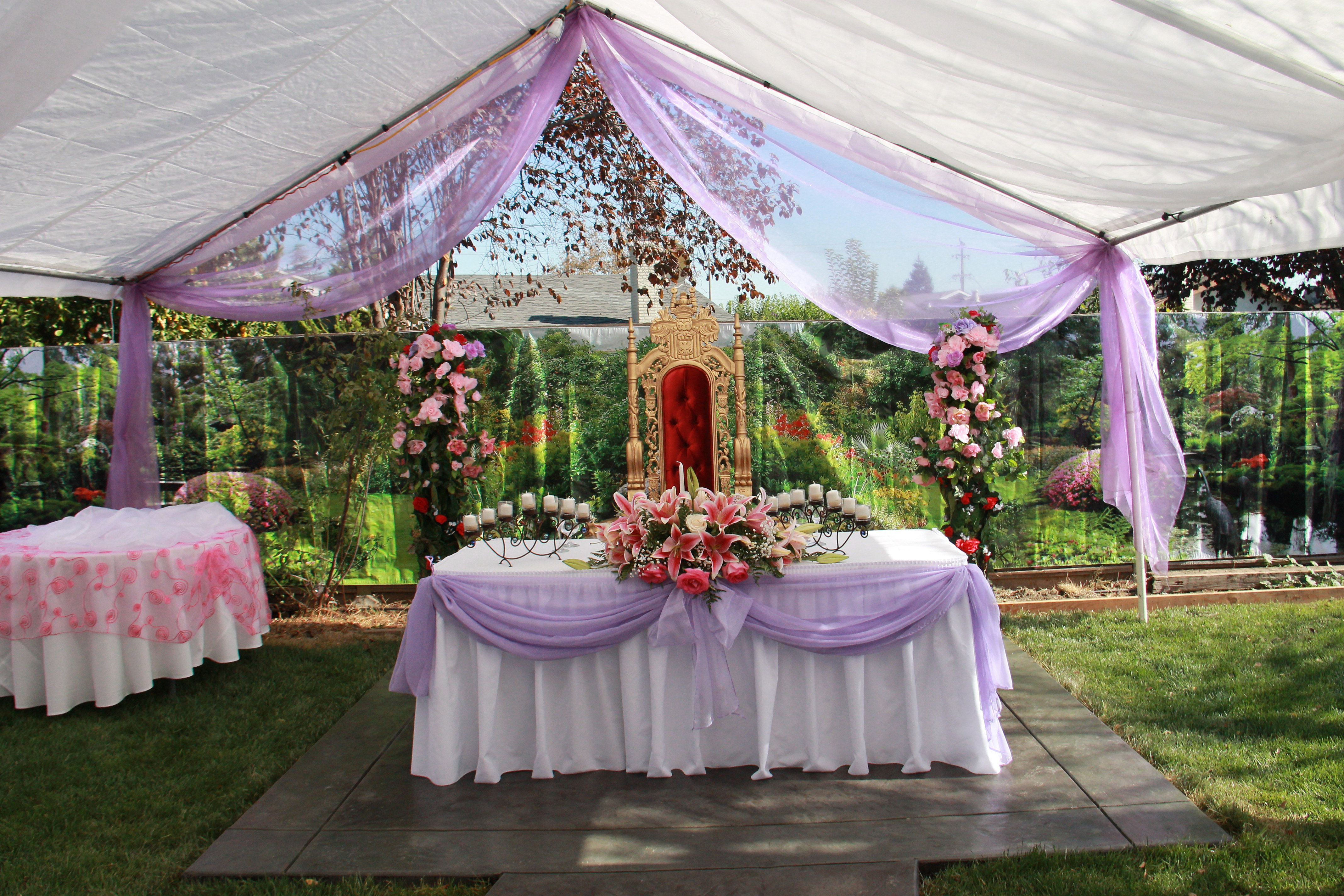 Silvias decorations san jose ca silvia zamora canopy for Canape decoration