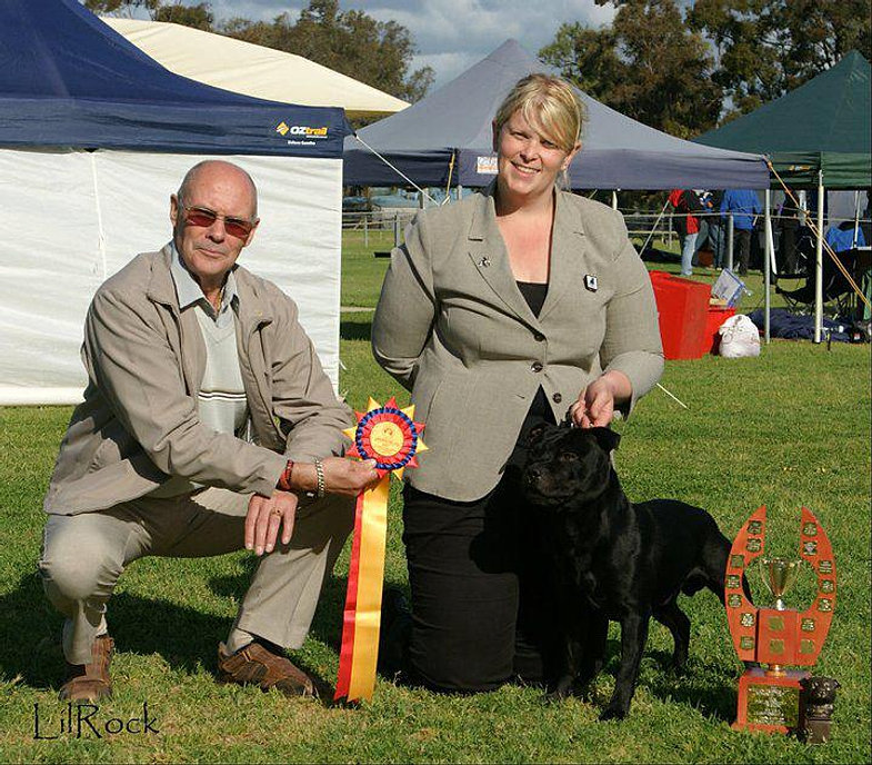 Intermediate In Show - Sth Aust 2010