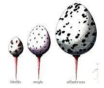 Birdie, Eagle, Albatross