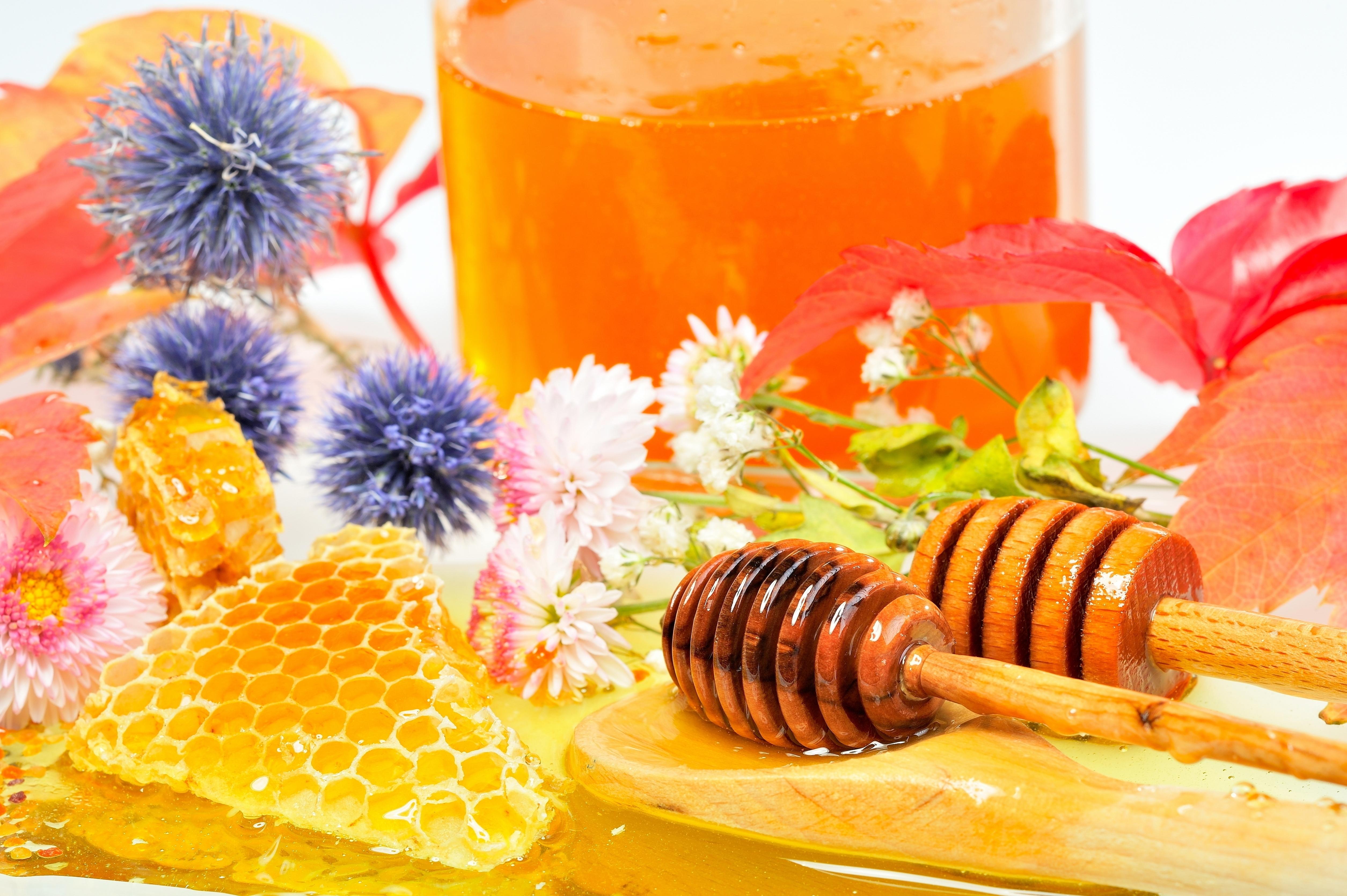 Заставки мед, honey, соты, цветы.  Картинки мед скачать на рабочий стол, фото honey.