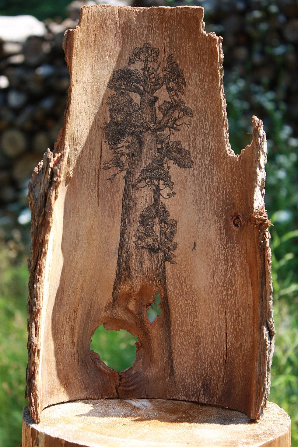 Поделки из коры дерева своими руками детям