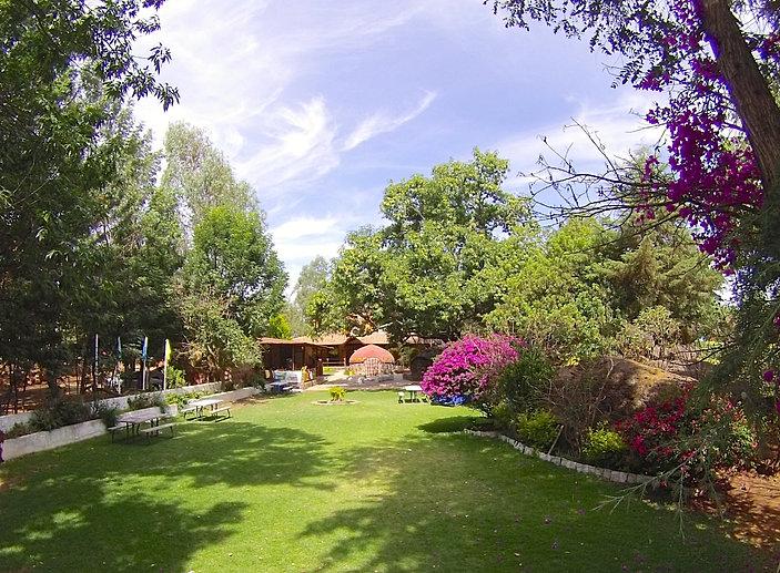 Jardin del temazcal