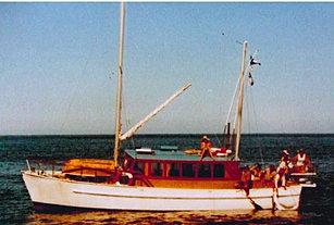Taimarino