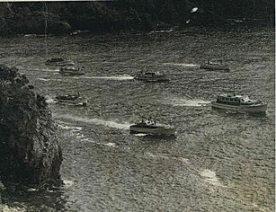 Fishing fleet leaving