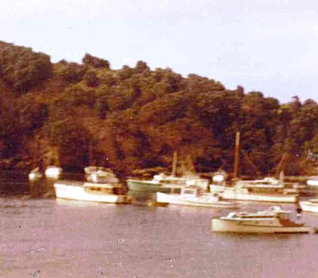 Boats in  South East Bay