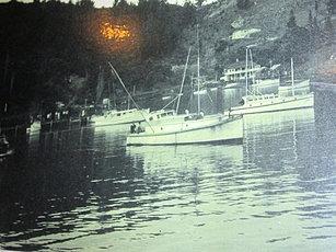 Game boats Whangaroa 1960's.