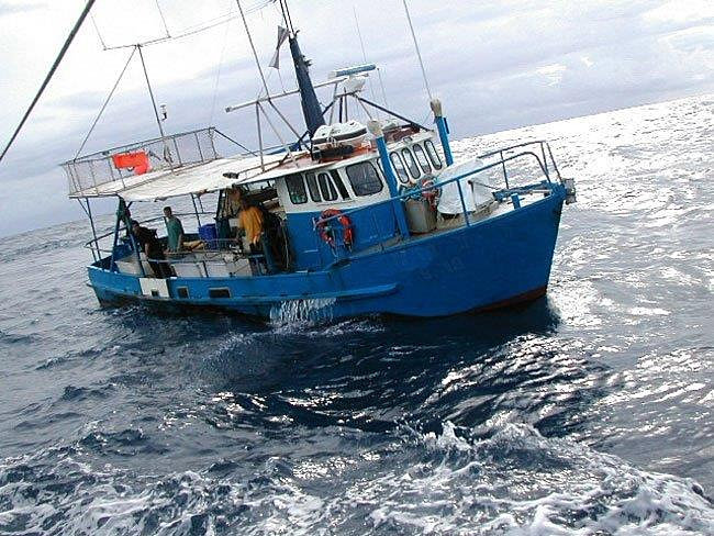 Classic Launches Game Fishing Boats New Zealand | Stargazer