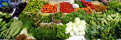 Choose a healthy plant based diet